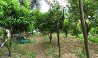 SORRENTO, loc. Casarlano, in posizione dominante, vendesi panoramica porzione di villa con giardino