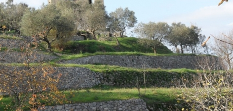Sant'Agnello, vendesi fabbricato colonico su tre livelli, in posizione dominante